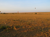 201608d肯亞馬賽馬拉草原熱氣球:肯亞六a (12).JPG