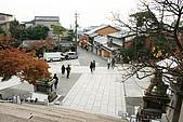 2009京都紅葉狩11/28-11/29:清水寺奇景