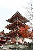 2009京都紅葉狩11/28-11/29:三重塔