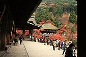 2009京都紅葉狩11/28-11/29:本堂-清水舞台
