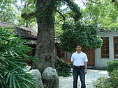 宜蘭縣宜蘭市:設治紀念館枯山水庭園