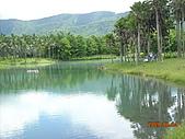 花蓮太魯閣鯉魚潭七星潭家庭旅遊:花蓮美麗的池塘和天鵝