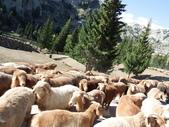 北疆:北疆十日 2229.JPG