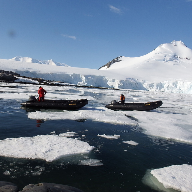 431.JPG - 南極