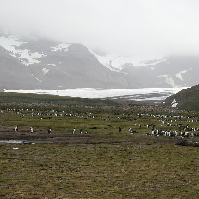 170 (2).JPG - 南極