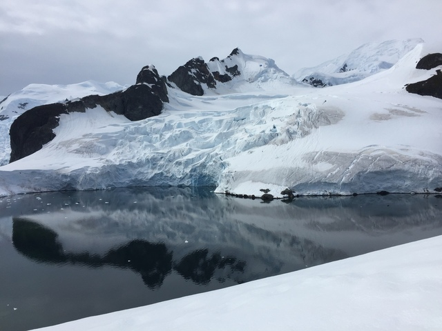 IMG_8385.JPG - 南極