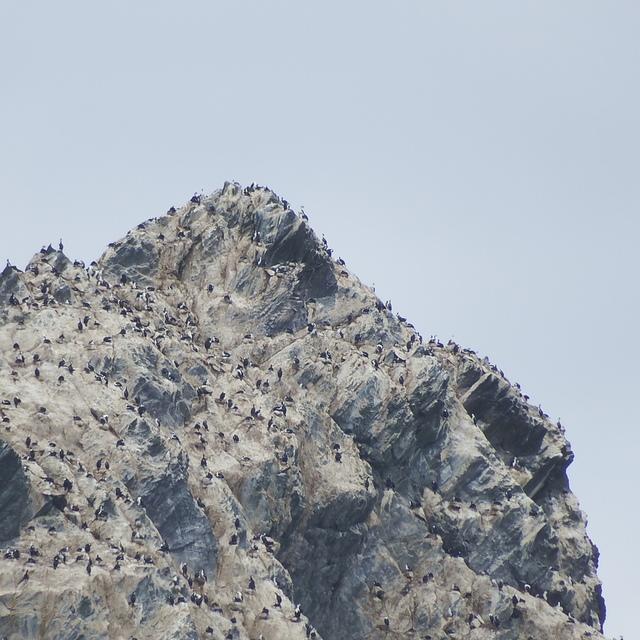 024.JPG - 南極