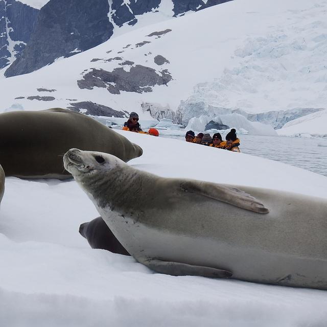 062.JPG - 南極