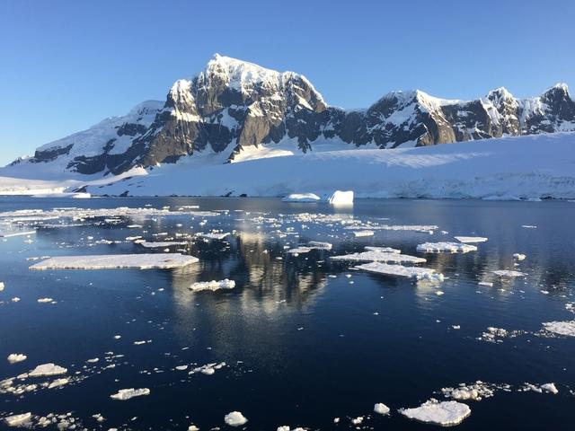 IMG_7543.JPG - 南極