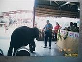 Southeast Asia東南亞諸國旅遊照片:100_5626.JPG