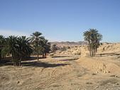 北非突尼西亞摩洛哥40天2010/01/06---02/19:IMGP0149.JPG