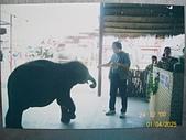 Southeast Asia東南亞諸國旅遊照片:100_5628.JPG