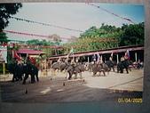 Southeast Asia東南亞諸國旅遊照片:100_5624.JPG