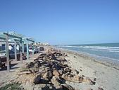 北非突尼西亞摩洛哥40天2010/01/06---02/19:IMGP0167.JPG
