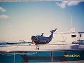 琉球旅遊照片Japan:100_5500.JPG