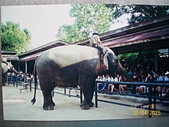 Southeast Asia東南亞諸國旅遊照片:100_5625.JPG