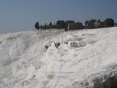 20111019-31土耳其:1026帕穆卡雷(棉堡) (34)