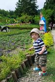 清境農場避暑之旅:IMG_0590.JPG