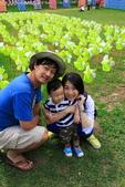 清境農場避暑之旅:IMG_0603.JPG
