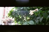 Fujifilm TIARA II:
