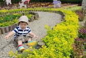 清境農場避暑之旅:IMG_0576.JPG