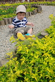 清境農場避暑之旅:IMG_0579.JPG