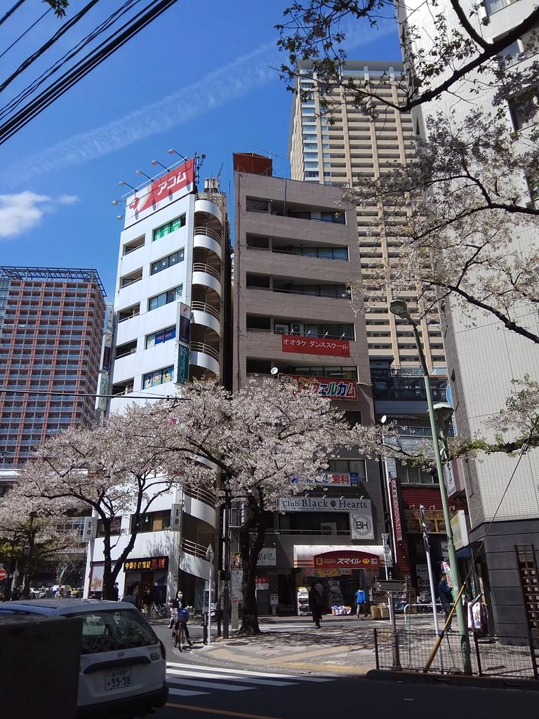 東京:IMG_20170412_122343.jpg