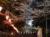 東京:P1030408.JPG
