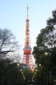 東京:IMG_0358.JPG
