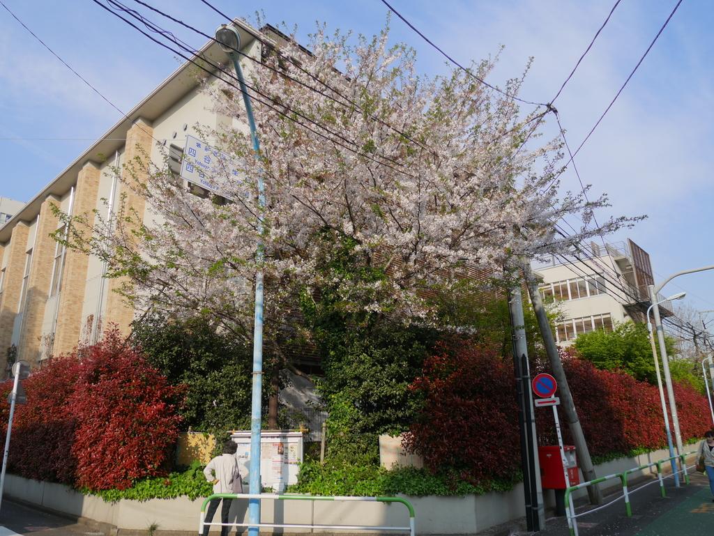 東京:P1030599.JPG