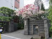 東京:P1030363.JPG