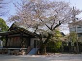 東京:P1030592.JPG