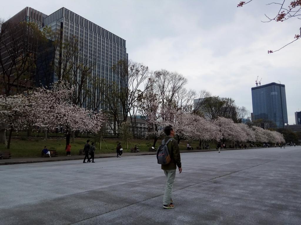 東京:IMG_20170415_142209.jpg