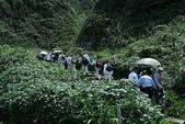 2009楊梅資青龜山島之旅:2009-04-12楊梅資青龜山島之旅 119-1