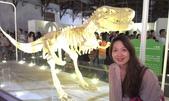 20120721台北LEGO展+新北投:20120721松山LEGO展-007.jpg