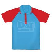 POLO衫-訂製:PS105004.jpg