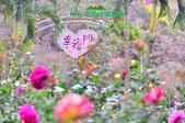 【2015線上賞花】:幸福門.jpg