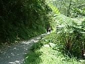 礁溪林美石磐步道:DSCF0896