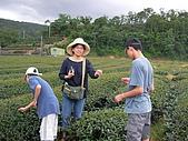 中山休閒農業區單車之旅:SANY0057.JPG