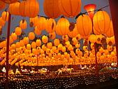 2009台灣燈會在宜蘭:祈福燈林