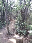 南澳-朝陽步道:PIC_0039