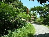 礁溪林美石磐步道:DSCF0898