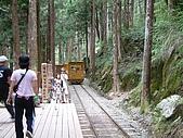太平山-茂興懷舊步道:DSCF0091