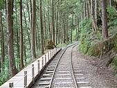 太平山-茂興懷舊步道:DSCF0096