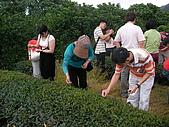 中山休閒農業區單車之旅:SANY0059.JPG