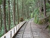太平山-茂興懷舊步道:DSCF0097