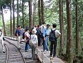太平山-茂興懷舊步道:DSCF0098