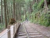 太平山-茂興懷舊步道:DSCF0100