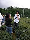 中山休閒農業區單車之旅:SANY0060.JPG