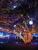 2009台灣燈會在宜蘭:樹燈